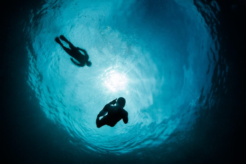 snorkellers silhouettes