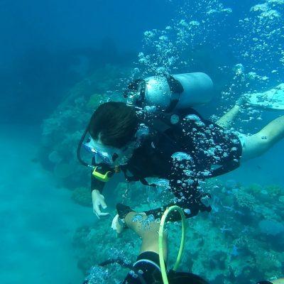 diving-778495_1920