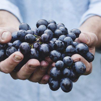 grapes-690230_1920