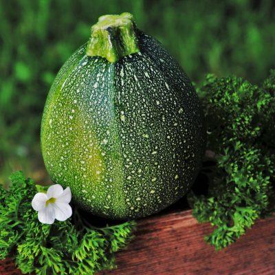 zucchini-3460741_1920